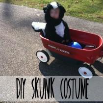 diy skunk costume