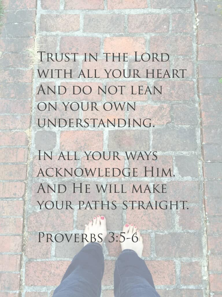 proverbs 3 5 to 6 alt