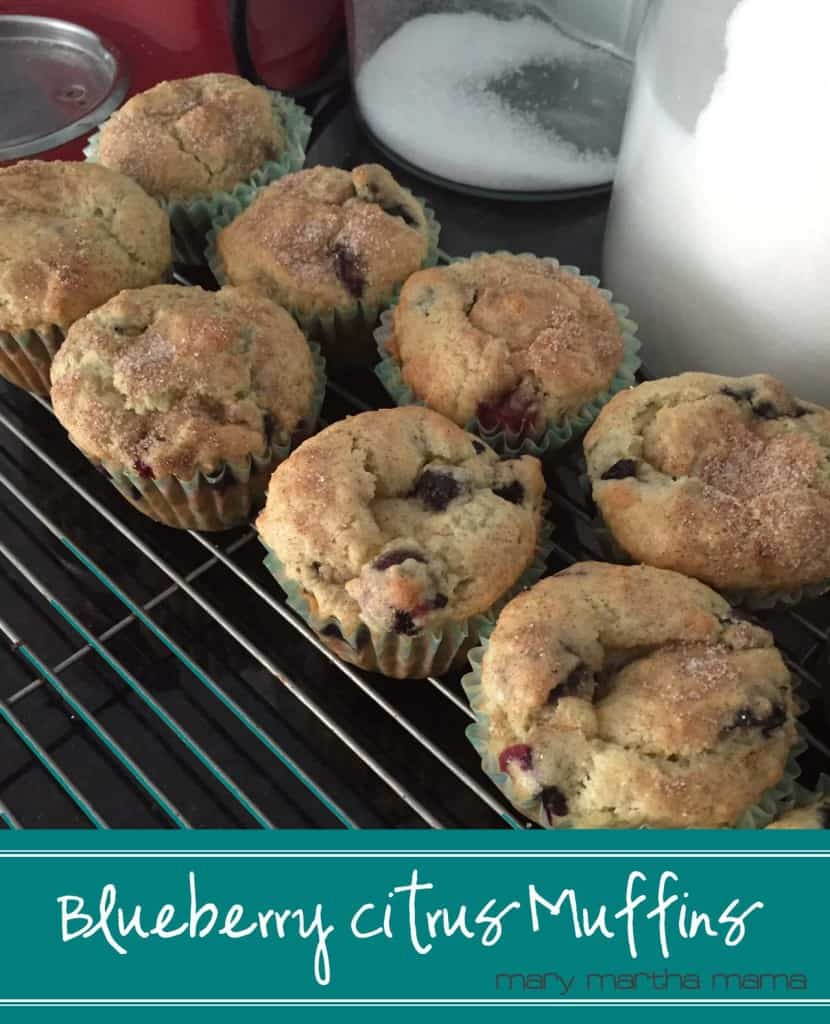 blueberry citrus muffins pin