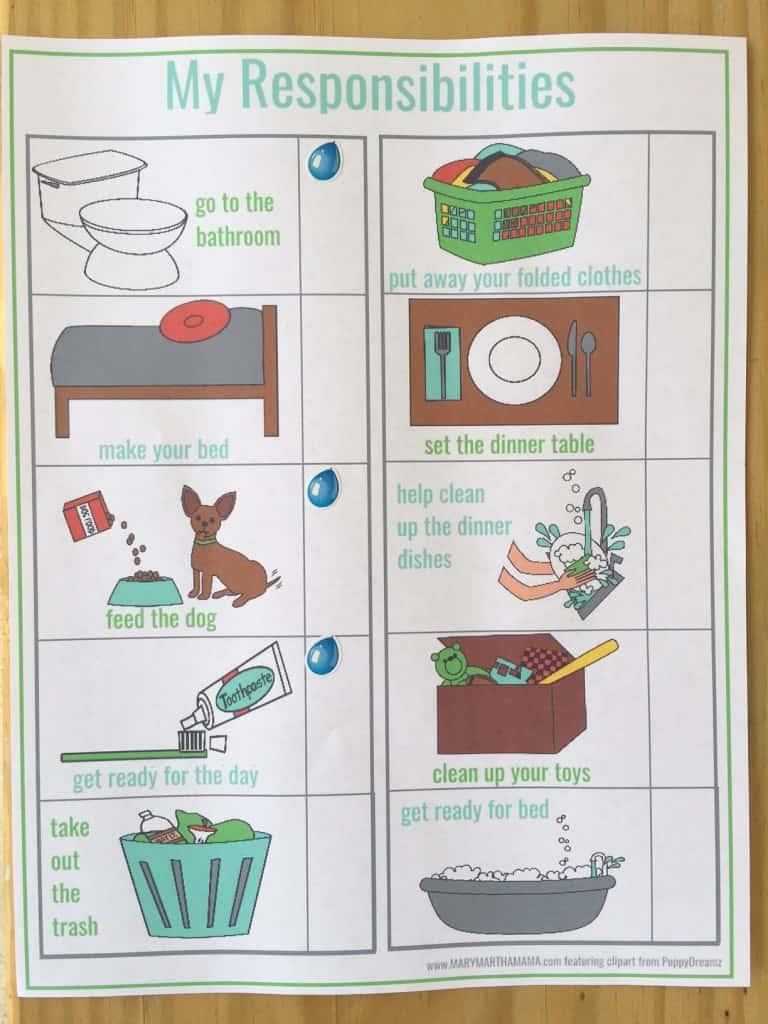 responsibility chart pic
