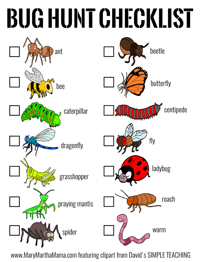 bug hunt checklist