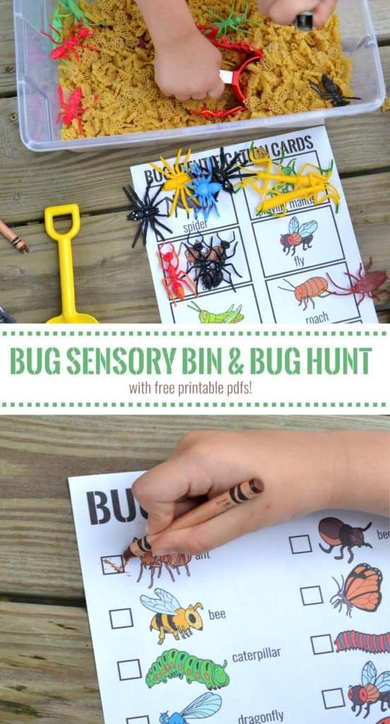 bug sensory bin 3 pin