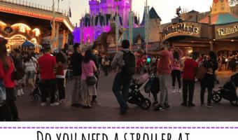 Do You Need a Stroller at Disney World?